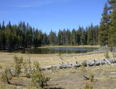 116 Yosemite Dog Lake