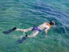 FLbx Koralova podivana