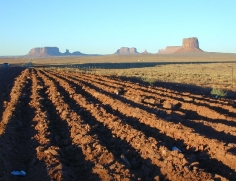 29 Monument Valley