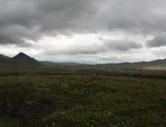 Kamchatka PS08