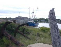 MV Anchors 1