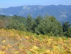 Bulharsko 022