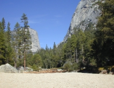 103 Yosemite