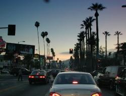 Sunset Blvd 1